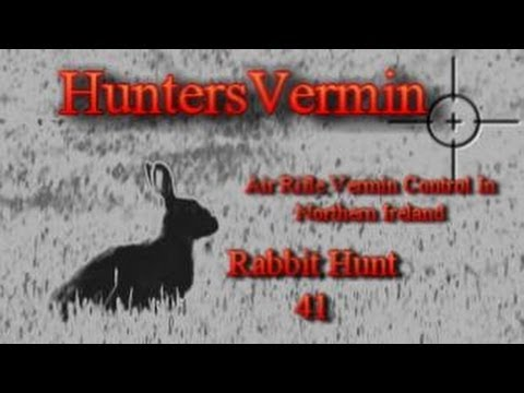 Air Rifle Hunting. Rabbit Hunt 41. May 2014