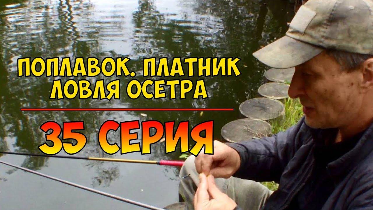 рыбалка для начинающих видео с нормундом грабовскисом