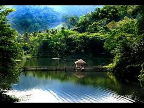 Salim Ali Bird Sanctuary Kerala an Exclusive on Salim Ali Bird