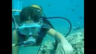 Deniz Diving