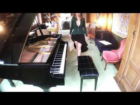 Insanely Fast Version - Moonlight Sonata 3rd Movement - Ludwig van Beethoven