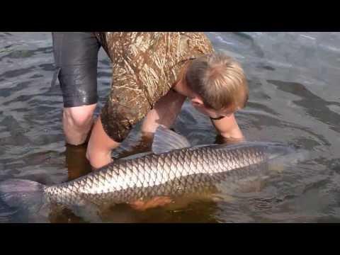 рыбалка в марте на амуре
