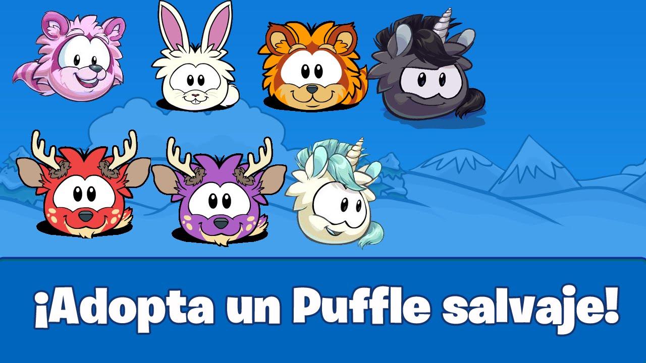 1280 x 720 jpeg 151kb puffle pet adder officialannakendrick com