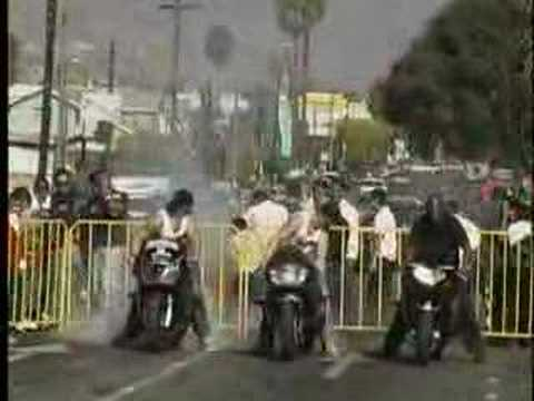 Urban Street bike Warriors II