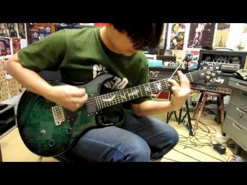 Prs Se Paul Allender Signature Guitar Demo