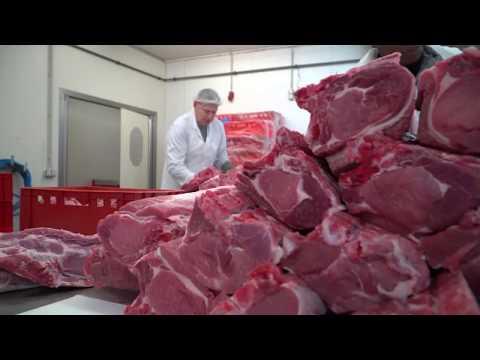 Fleischatlas 2018: Für Klima und Gesundheit - Deutsche sollen Fleischkonsum halbieren