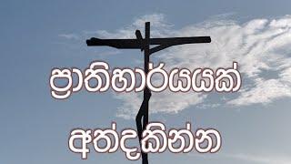 Supuwath Arana - 2019-10-23
