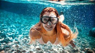 Snorkeling Siesta Key