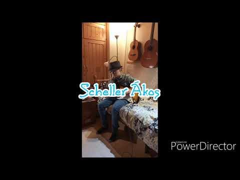 Sunny, előadja: Scheller Ákos
