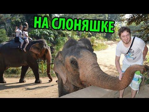 На Слоняшке Покатушки ^_^ (Нифедыч в Шри Ланке #3)