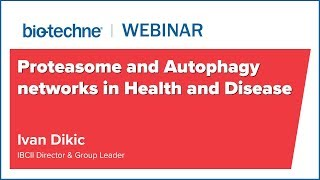 Proteasome and Autophagy networks in Health and Disease, by Prof Ivan Dikic