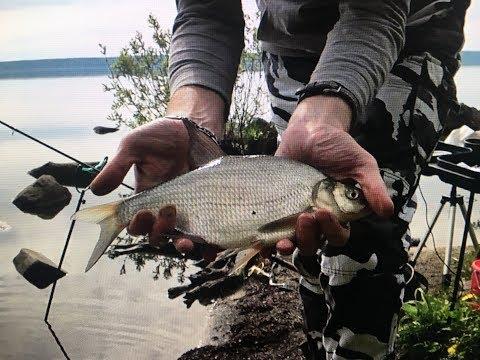 ютуб рыбалка на шарташе