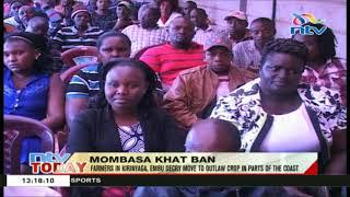 Farmers in Kirinyaga and Embu counties decry move to ban Miraa in parts of  the coast region