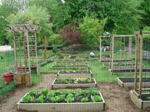 annual garden layout plans