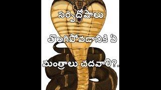 Sarpa Dosha Nivarana Mantram