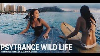 Electric Samurai - Psytrance Wild Life Experience En Masse 2016