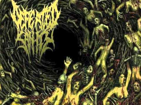 Defeated Sanity - Butchered Identity
