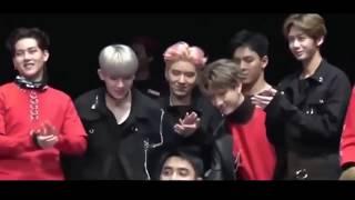 Top 10 K-Pop Idols Reacting To BTS!