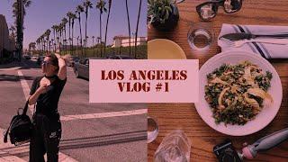 Viagem p/ Estados Unidos e tour pela TARGET! - LOS ANGELES VLOG #1