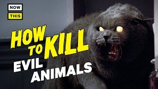 How to Kill Evil Animals | NowThis Nerd