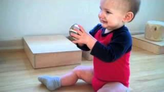 Infant Community- Parent/Teacher Observation