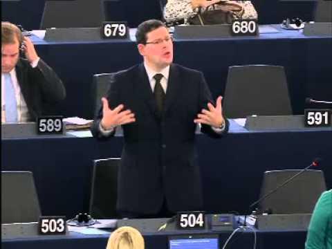 Képviselői felszólalás - 2014.11.25. Strasbourg