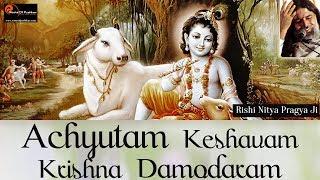 Achyutam Keshavam Krishna Damodaram   Krishna Bhajan By Nitya Pragya Ji   Devotional Song