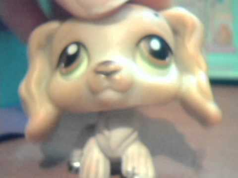 bring the old littlest pet shops back!!!