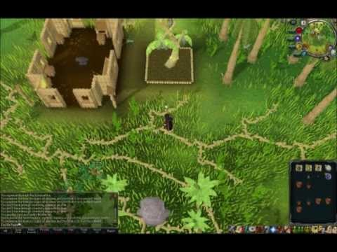 Runescape Farming Guide All Tree Runs – Jackda Rippa