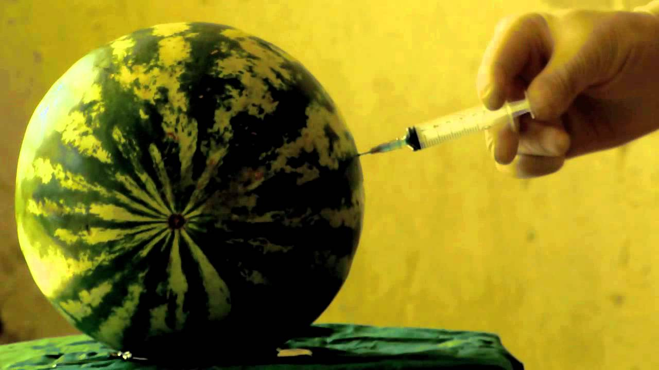 Watermelon Injection And Explosion Youtube