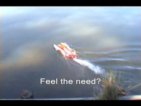 RED-EVO HYDRO PLANE EP BRUSHLESS RACING BOAT W/ BRUSHLESS MOTOR