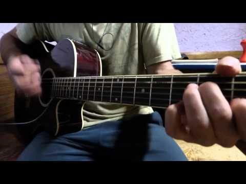 The Cranberries - Animal Instinct (Acoustic Guitar Cover) [HD]