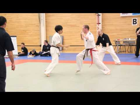2. Aikido Randori Shodokan UK Open 2011.mp4 Image 1