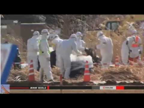 Fukushima 4 Years On (update 3/10/15)
