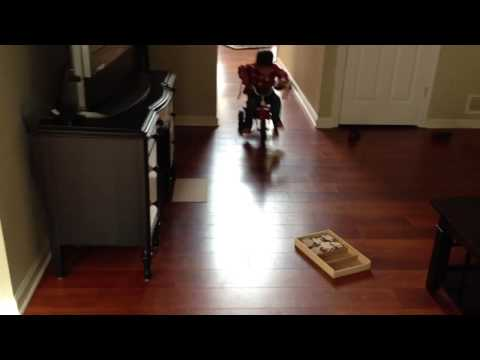 Baby drifting tricycle