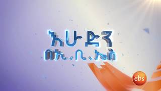 የእሁድን በኢቢኤስ አዳዲስ መረጃዎች /  Sunday with EBS New Highlights