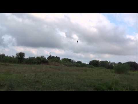 Blade 130x piro flip. piro travel. snake