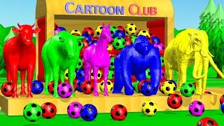 Learn Colors with Animals and Soccer #Ball Colorful Cartoon for Kids