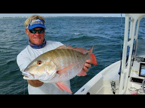 Grouper and Mutton Snapper in Key West
