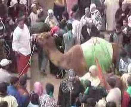 moulay-brahim  imlil  maroc tamazight asni  agendiss