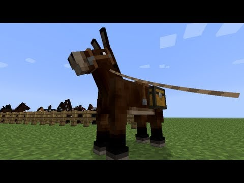 MineCraft 1.6 Mules. Donkeys. Breeding!