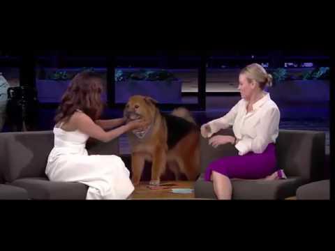 Priyanka Chopra talking about Indians in USA TV Interview