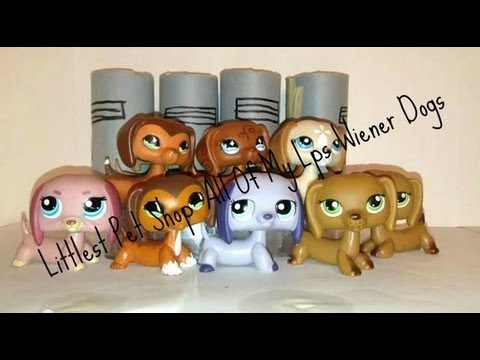 my Littlest Pet Shop Dogs Littlest Pet Shop All of my