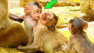 Good Baby Barbi Giving A Warmth To Poor Nanda While Need All Taking Care Him |#Monkey Nightmare