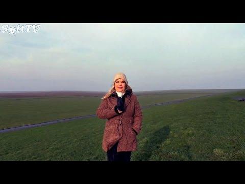 Wahlkampf, Weihnachten & mehr Sylt TV News vom 24.11.2014