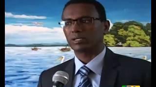Ethiopian Amharic Eve news December 31, 2015