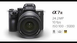 [4K video] Đánh giá Sony A7 Mark III - 1 trong những chiếc full-frame tốt nhất