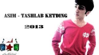 ASIM   TASHAB KETDING 2013