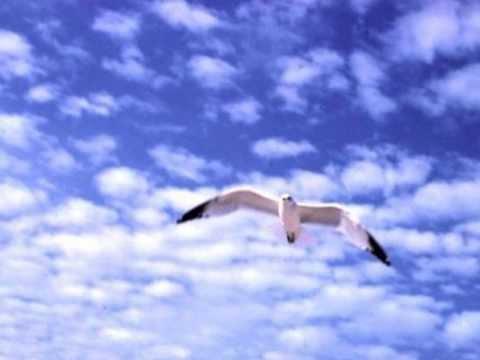 Nomadi - La Liberta