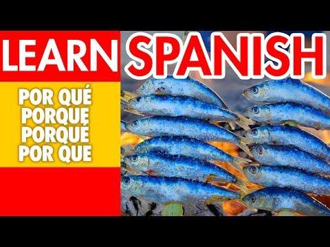 Difference Between Por Qué, Porque, Porqué And Por Que - Learn Spanish